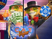 Кот В Вегасе от Playtech для новичков и профи азартных игр